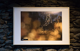 PHOTO PRINT : AMAURY PIERRON - AUTUMN IN BRIOUDE