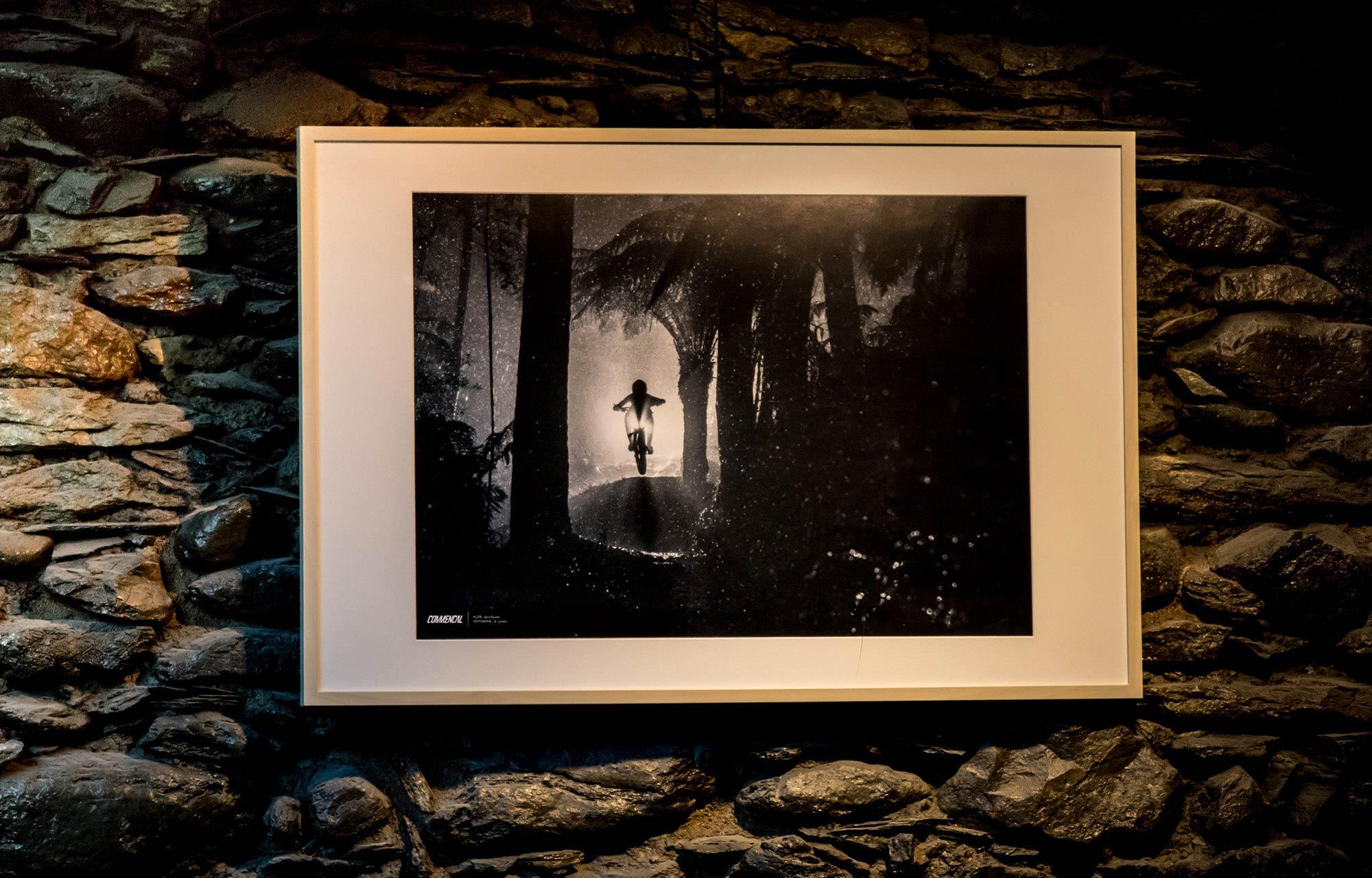 58315b31ea050 ... PHOTO PRINT   CECILE RAVANEL - PALMS ON THE MOON TASMANIA ...